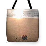 I Found Sun Shades By The Sea Shore Tote Bag