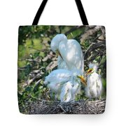 I Have My Hands Full Tote Bag