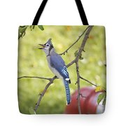 I Have Something To Say Tote Bag
