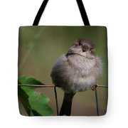 I Know You From Somewhere Tote Bag