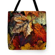 I Love Fall 2 Tote Bag by Joanne Coyle