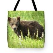 I Love Me A Teddy Bear Tote Bag by Belinda Greb