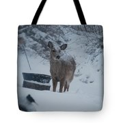 I Love Snow Tote Bag