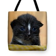 I Miss You Kitty Tote Bag