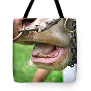 I Need To See My Dentist Tote Bag by Kaye Menner