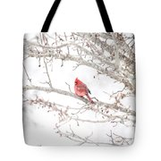 I Tend To Attract Attention Tote Bag