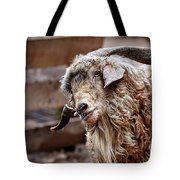 I Think I Am Having A Good Hair Day. What Do You Think? Tote Bag