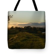 I Walked This Path Today And It Was Beautiful Tote Bag