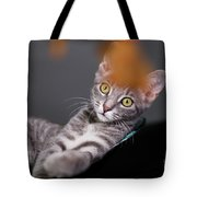 I Will Get It Tote Bag