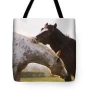 I Will Scratch You And You Will Scratch Me Tote Bag