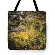 I Would Be The Shadow Of Your Light Tote Bag