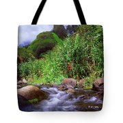 Maui Hawaii Iao Valley State Park Tote Bag