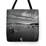 Iargo Springs 9502 Tote Bag