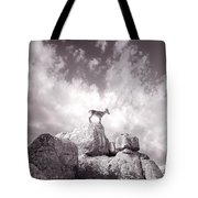 Ibex -the Wild Mountain Goats In The El Torcal Mountains Spain Tote Bag