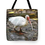 Ibis At Corkscrew Swamp Tote Bag