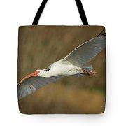 Ibis Glide Tote Bag