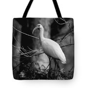 Ibis In Black And White  Tote Bag