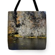 Ibis In Flight Tote Bag