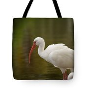 White Ibis Portrait Tote Bag