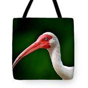 Ibis Portrait Tote Bag