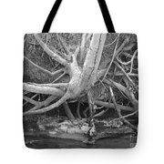 Twisted Roots  Tote Bag