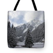 Ice Cold But Beautiul Tote Bag