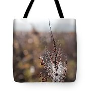 Ice Crystals On Dried Wild Flower Tote Bag