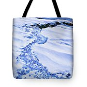 Ice Cube Creek Tote Bag