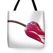 Ice Drops On Tulip Tote Bag