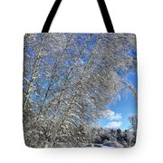 Ice Laden Birches Tote Bag