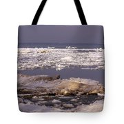 Ice On Lake Huron Tote Bag