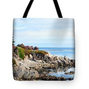 Ice Plant Along The Monterey Shore 2 Tote Bag