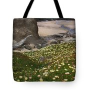 Ice Plants On Moss Beach Tote Bag