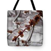 Ice Rain In Springtime Tote Bag