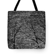 Ice Rain Tote Bag