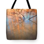 Ice Reflections 2 Tote Bag