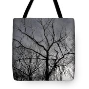 Ice Storm Tote Bag