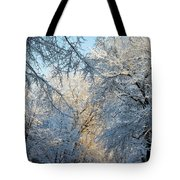 Ice Storm On The 6th IIi Tote Bag