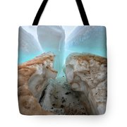 Ice Tooth Tote Bag