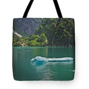Ice Tracy Arm Alaska Tote Bag