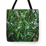 Iceblue Squill Tote Bag