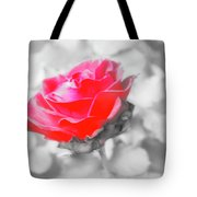 Iced Rose Tote Bag