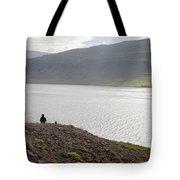 Iceland 12 Tote Bag