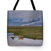 Iceland Sheep Reflections Panorama  Tote Bag