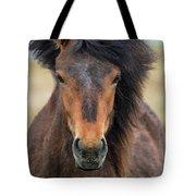 Icelandic Equine Beauty.. Tote Bag