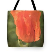 Icelandic Poppy 1124 Tote Bag