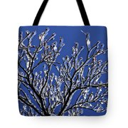 Icey Sparkle Tote Bag