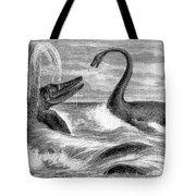 Ichthyosaurus And Plesiosaurus Tote Bag