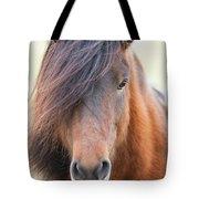 Iclelandic Horse Close Up Tote Bag