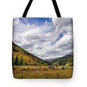 Iconic Colorado Tote Bag
